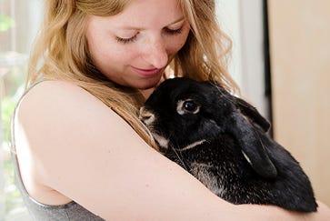 Benefits of de-sexing your rabbit