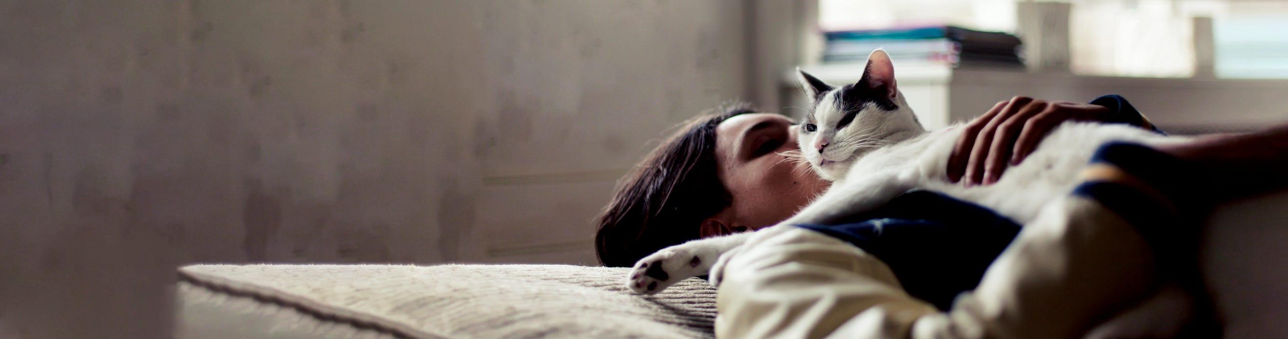 Current methods for managing cat allergens have limitations