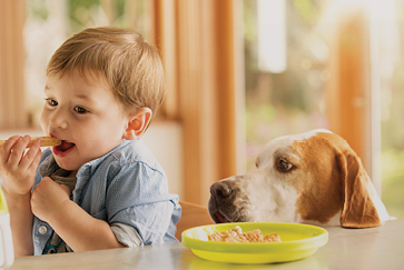 Why table scraps are bad for your dog