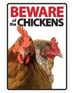 I142944-Beware Of The Chicken Sign.