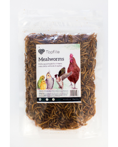 I167465-Topflite Dried Mealworms 125g