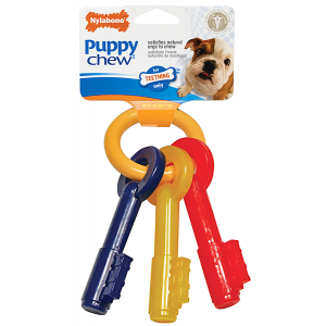 I249121-Nylabone Teething Keys Large Puppy Chew Toy