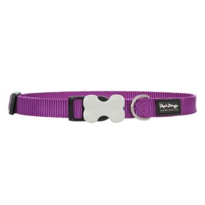 I248384-Red Dingo Small Adjustable Dog Collar Purple
