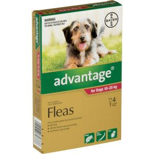 I246776-Advantage Flea Treatment For Dogs 10-25kg - 4 Pack