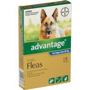 I246794-Advantage Flea Treatment For Dogs Over 25kg - 4 Pack