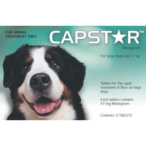 I248281-Capstar Flea Treatment For Dogs Over 11kg 6 Pack
