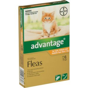 I247175-Advantage Flea Treatment For Cats Under 4kg - 6 Pack