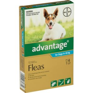 I246775-Advantage Flea Treatment For Dogs 4-10kg - 4 Pack