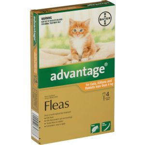 I246725-Advantage Flea Treatment For Cats Under 4kg - 4 Pack
