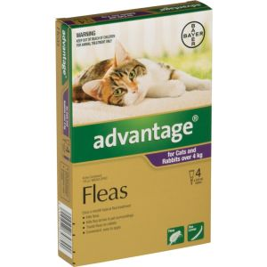 I246773-Advantage Flea Treatment For Cats Over 4kg - 4 Pack