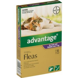 I246683-Advantage Flea Treatment For Cats Over 4kg - 6 Pack