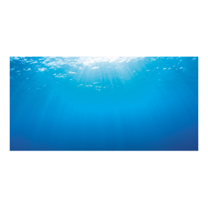 I248586-Juwel Tank Background Underwater Small