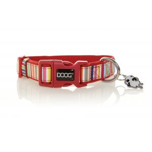 I247543-Doog Scooby Candy Stripe Medium Dog Collar
