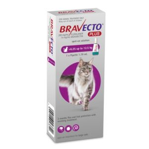 I246567-Bravecto Plus Spot On Flea Treatment For Cats 6.25-12.5kg - Purple 1 Pack