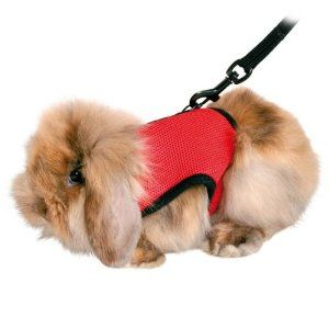 I137421-Trixie Guinea Pig Soft Harness