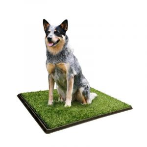 I237206-Playmate Outhouse For Dogs 63x51cm