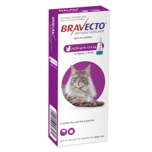 I246859-Bravecto Spot On Flea Treatment For Cats 6.25-12.5kg