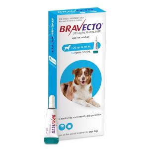 I246563-Bravecto Spot On Flea Treatment For Large Dogs 20-40kg - Blue 1 Pack