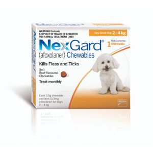 I240957-Nexgard Chewable Tablet Flea & Tick Treatment For X-sml Dogs 2-4kg - 1 Pack