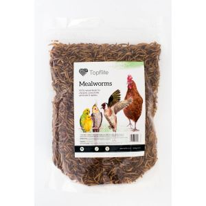 I176482-Topflite Dried Mealworms 500g