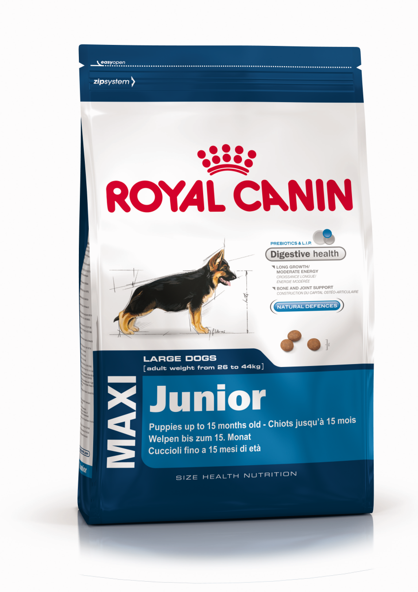 royal canin maxi puppy professional