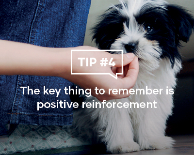 The key thing to remember is positive reinforcement