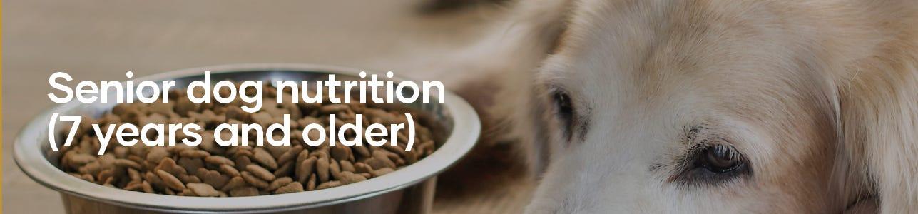 Image banner: Senior dog nutrition. 7 years and older.