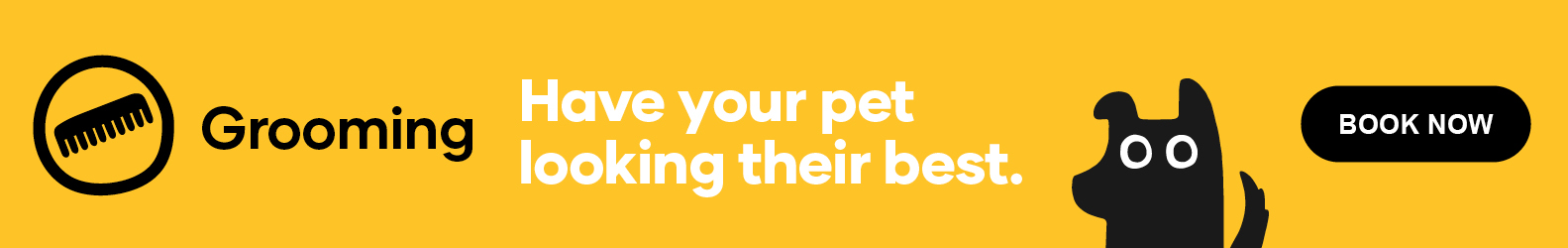 Have your pet looking their best.