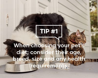 When choosing your pets diet; consider their age, breed, sizer and any health requirements