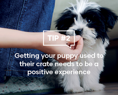 Getting your puppy used to their crate needs to be a positive experience
