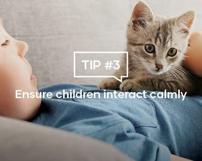 Ensure children interact calmly