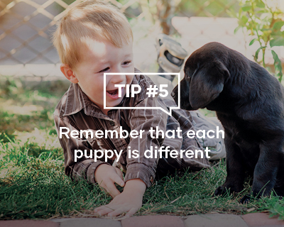 Remember that each puppy is different