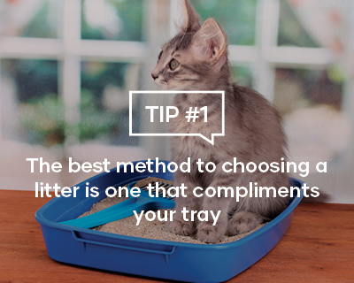 The best method to choosing a litter is one that compliments your tray