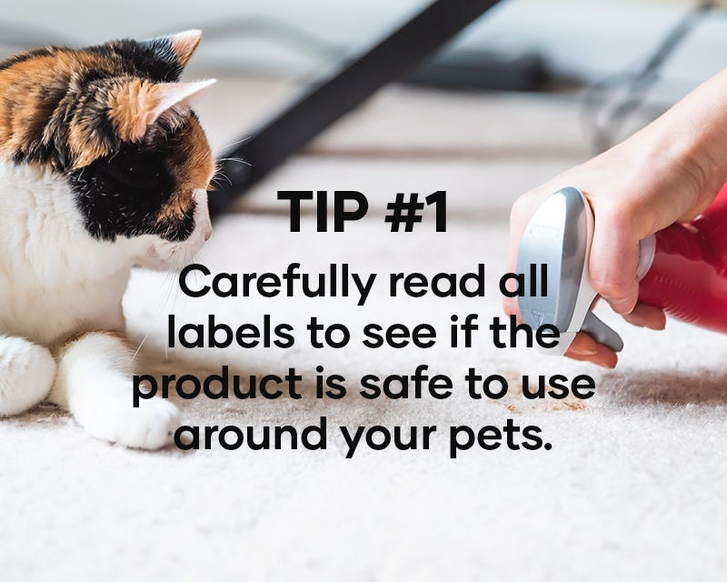 Tip #1: Carefully read all labels to see if the product is safe to use around your pets.
