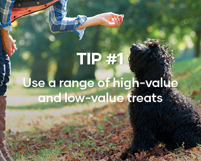Tip #1. Use a range of high-value and low-value treats