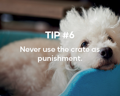 Tip #6. Never use the crate as punishment.