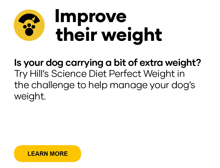 Improve their weight   Is your dog carrying a bit of extra weight? Try Hill's Science Diet Perfect Weight dog food in the challenge to help manage your dog's weight.