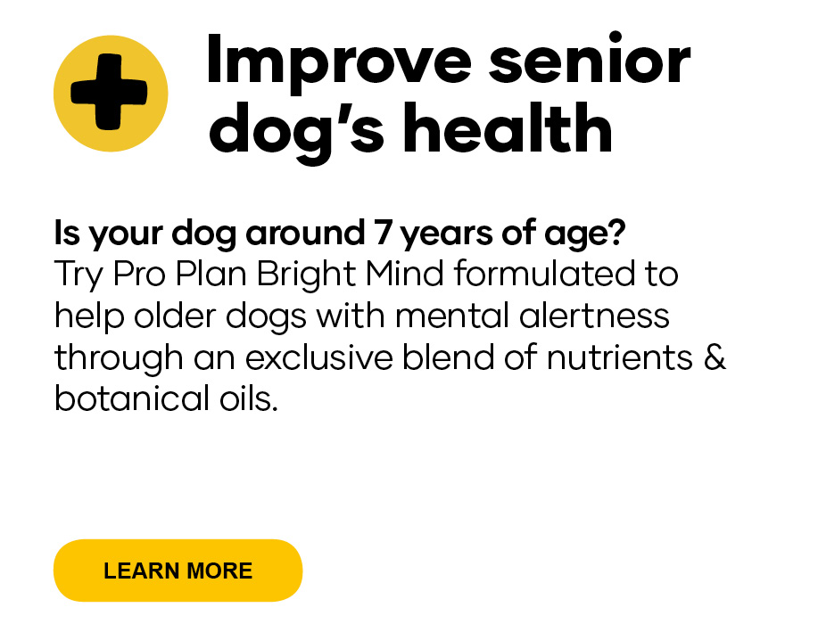 Improve senior dog's health  Is your dog around 7 years of age? Try Pro Plan Bright Mind dog food  formulated to help older dogs with mental alertness through an exclusive blend of nutrients & botanical oils.