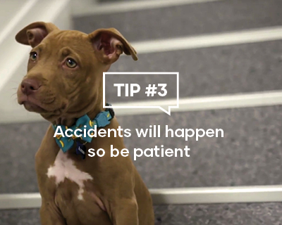 Accidents will happen so be patient