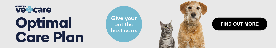 Optimal Care Plan. Give your pet the best care.