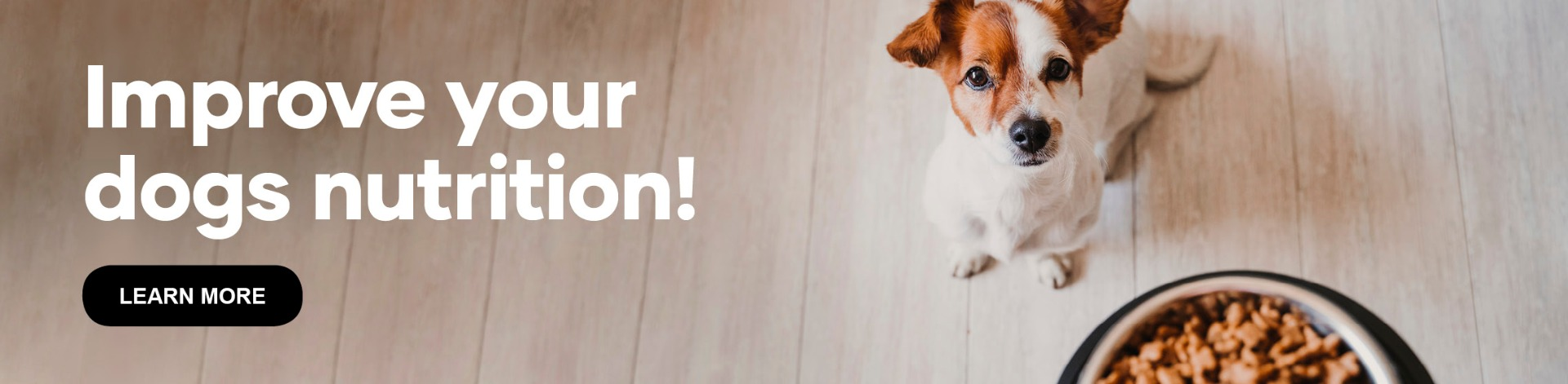 Improve your dogs nutrition