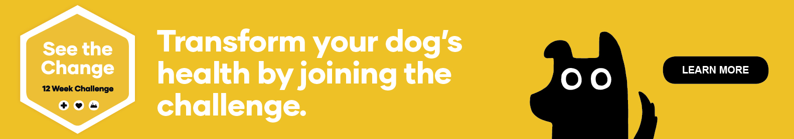 See the change - 12 week challenge. Transform your dog's health by joining the challenge.