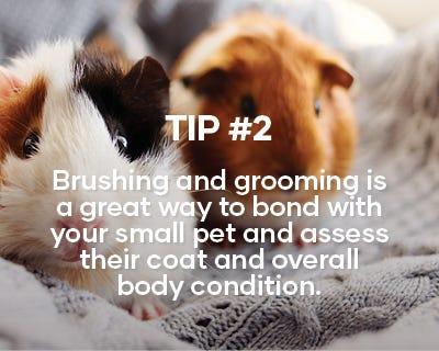 Tip 2